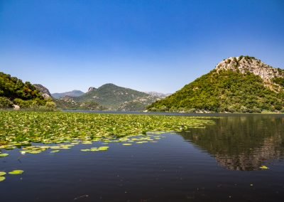 "Lago Skadar no Montenegro. Foto: <a href=""https://visualhunt.co/a4/186abf"">cyberborean</a> on <a href=""https://visualhunt.com/re6/e1ed01dd"">Visualhunt</a> / <a href=""http://creativecommons.org/licenses/by-sa/2.0/""> CC BY-SA</a>"